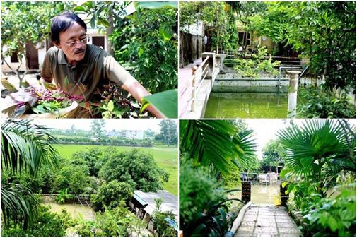 Cơ ngơi nhà vườn của danh hài Giang Còi lên tới 10.000m2.