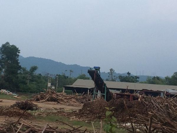 Xưởng băm dăm trái phép tại thôn Đông Phú, xã Đông Hiếu thị xã Thái Hòa. Ảnh: HC