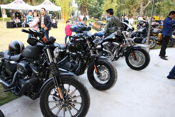 Những chiếc mô tô Harley Davidson thường mang phong cách mạnh mẽ, phóng khoáng