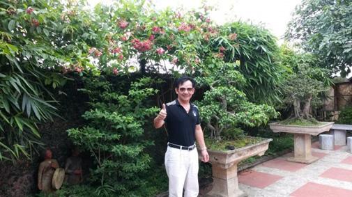 Trong sân nhà có vô số cây cảnh đẹp mắt. Phía tường bao quanh thì trồng cây dây leo.