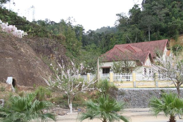 Hầm rượu nằm sát bên đường và ngay cạnh nhà của Bí thư huyện Tây Giang - ông Bh'riu Liếc gây xôn xao dư luận trong mấy ngày nay