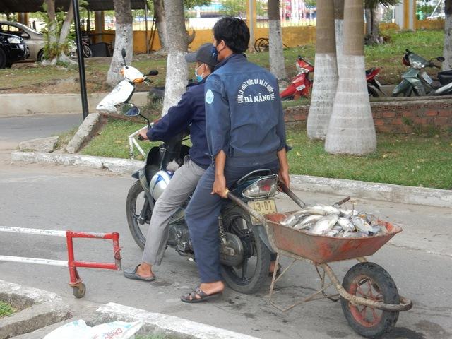 ...rồi các công nhân chở đi tập kết lại một chỗ, sau đó xe chở rác sẽ chở lên bãi rác chôn. Ảnh: Đức Hoàng
