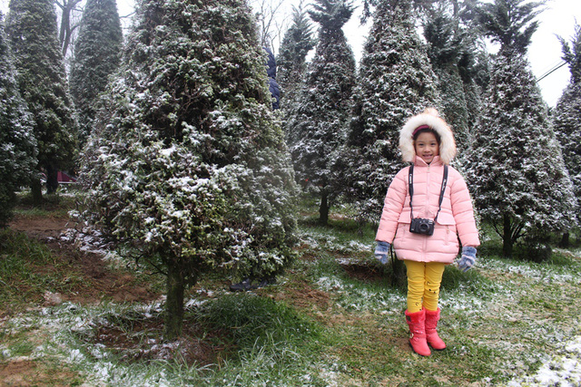 Nhiều em bé được bố mẹ cho đi ngắm tuyết.
