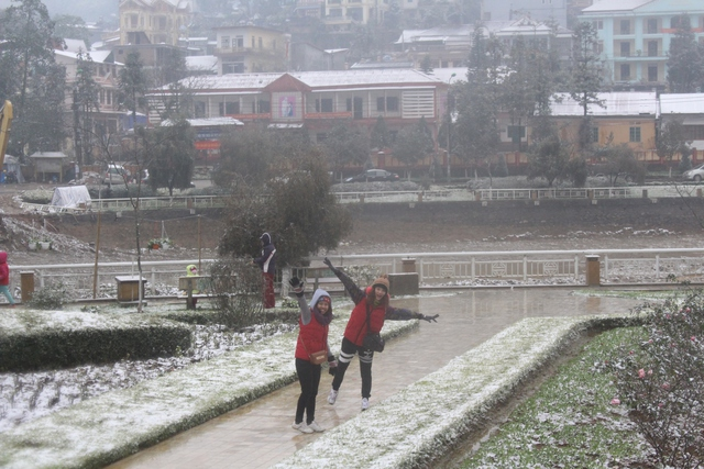 Khách du lịch thích thú với tuyết tại vườn hoa thị trấn Sapa.Ảnh: Nghiêm Linh.