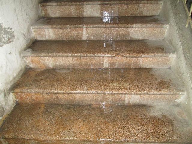 Cầu thang luôn trong tình trạng ướt nhẹp. Ảnh: Ngọc Thi
