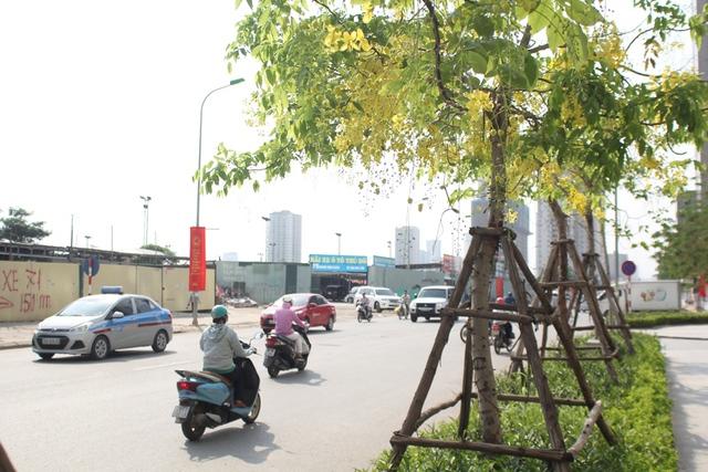 Hoàng yến giờ đây là một đặc sản của Hà Nội mỗi khi hè về.