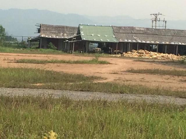 Xưởng gỗ dăm chuẩn bị hoạt động tại xã Nghĩa Long, Nghĩa Đàn, Nghệ An. Ảnh: HC