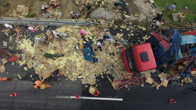 Những người dân sống gần đây đã vội lao ra đường. Thay vì cứu những chú gà tội nghiệp, nhiều người mang theo túi, hộp, thậm chí là cả chậu để đựng gà. (Nguồn: CCTVNews)