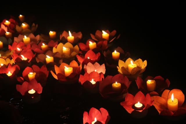 Những bông hoa đăng trên dòng nước tạo thành bức tranh lung linh huyền ảo