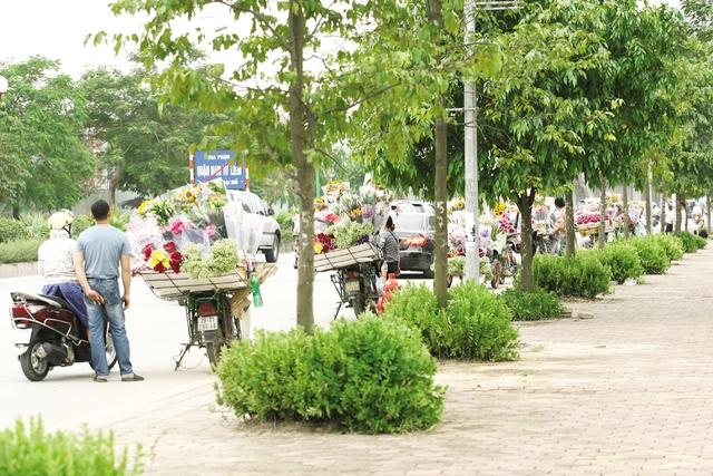 Đội ngũ bán hoa dạo đứng thành một hàng dài trên đường Tố Hữu.