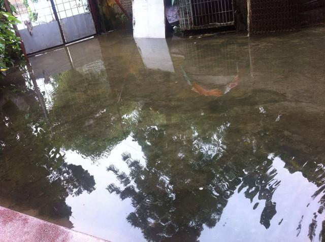Nhiều nhà dân trong khu Quáng Nam bị ngập lụt vào tận trong nhà