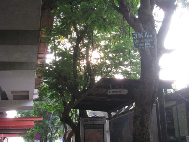 Tấm biển mini trên đường Xuân Thủy (Cầu Giấy).