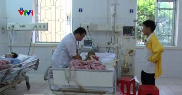 Sau khi ăn vải tự trồng, 1 bé trai ở Cao Bằng đã tử vong. Ảnh: VTV