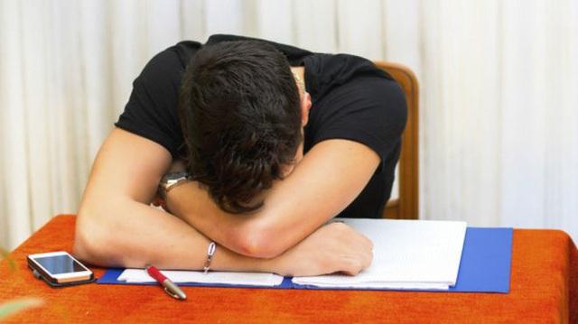 Tranh thủ một giấc ngủ trưa mỗi ngày để nạp thêm năng lượng cho cơ thể là điều hết sức bình thường với mỗi người.