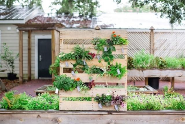12. Và nếu bạn là người yêu thích công việc trồng rau, trồng hoa thì bạn có thể chế tác những thanh gỗ pallet thành một khu vườn đứng cho nhà mình.
