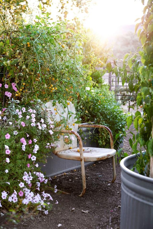 12. Một chút ngọt ngào khi ghế nghỉ trong vườn được trồng thêm những cây hoa nở rực rỡ vào mùa hè.