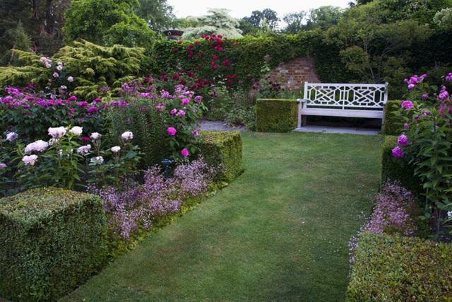 17. Trồng thêm hoa bụi có khả năng nở nhanh và thích nghi với khí hậu mùa hè để sân vườn thêm rực rỡ.