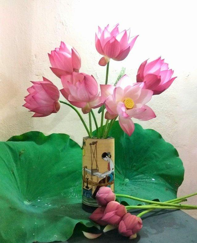 Nhờ chọn những bông búp, chưa nở, không bị trầy xước, nên hoa của chị Ngô Phượng tươi khá lâu