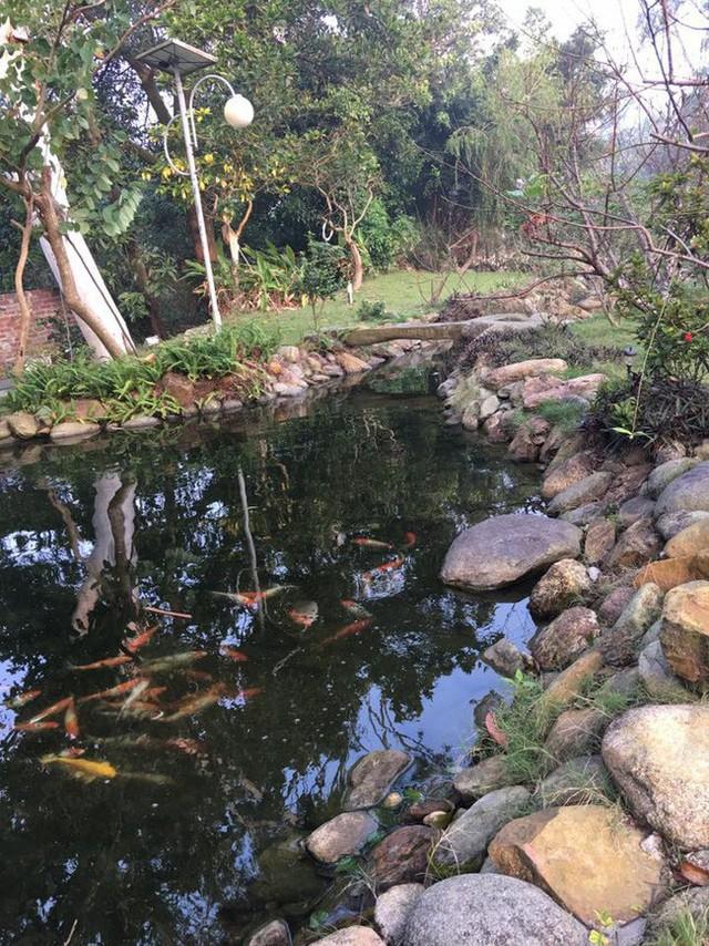 Trong khuôn viên vườn còn có một ao nhỏ để thả cá.