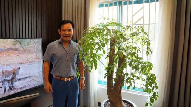 Danh hài cũng khá chú ý tới khoảng xanh trong không gian sống khi bày một chậu cây lớn trong nhà được anh chăm chút, cắt tỉa thường xuyên.
