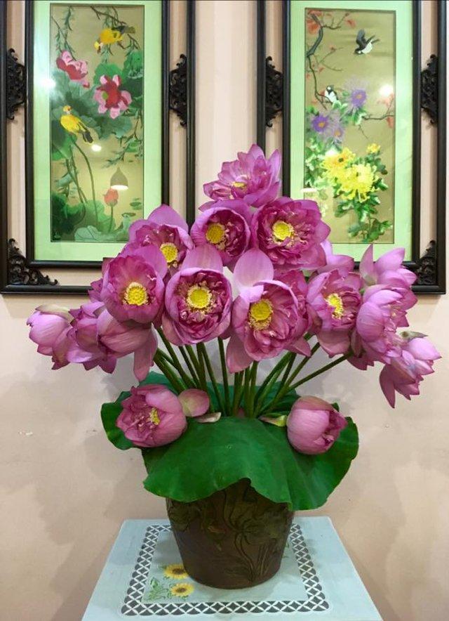 Những bình hoa sen của chị Ngọc Dân luôn được nhiều chị em ngưỡng mộ