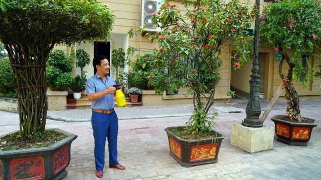 Phía trước nhà là dàn cây xanh được gia đình anh chăm sóc hàng hàng ngày mỗi khi có thời gian rảnh rỗi.