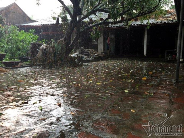 Với người dân Hà Nội, mưa đá là hiện tượng bất thường rất hiếm gặp, mưa đá thường chỉ xuất hiện trong thời điểm giao mùa.