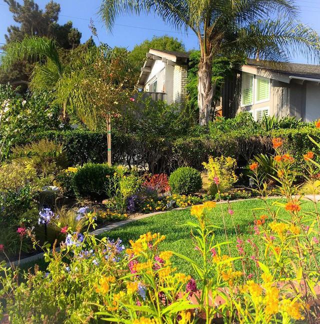 Ngôi nhà nhỏ yên bình giữa một khu vườn đẹp.