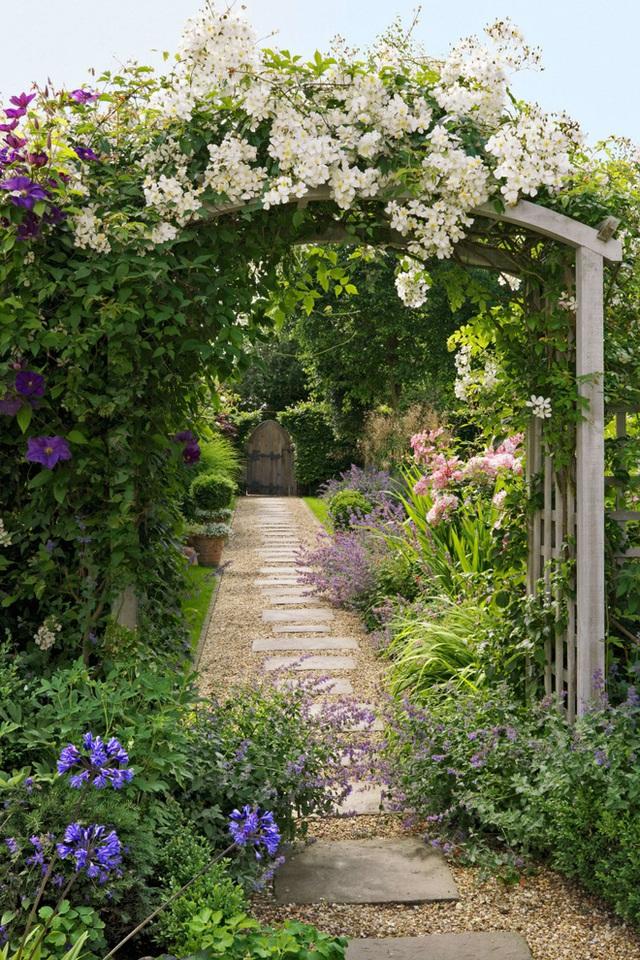 6. Lối đi vào sân vườn sẽ đẹp hơn khi bạn trồng thêm hoa leo trước cổng, hoa với màu sắc tươi mới sẽ giúp cho khu vườn vốn quen thuộc trở nên nổi bật hơn.