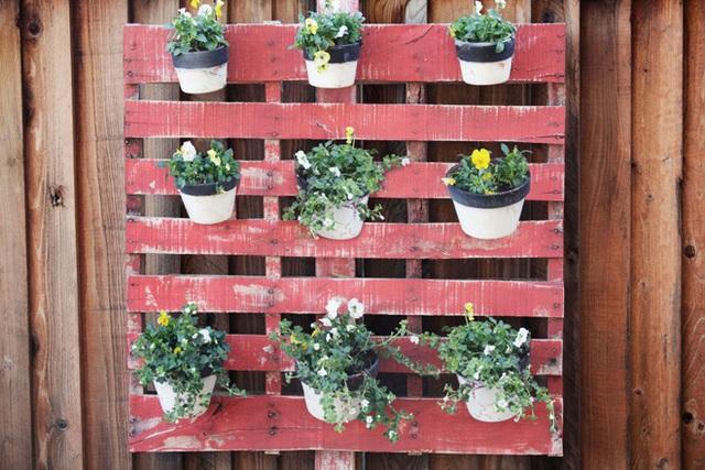 9. Tạo vườn đứng nhỏ xinh bằng pallet để gắn các chậu hoa lên trên.