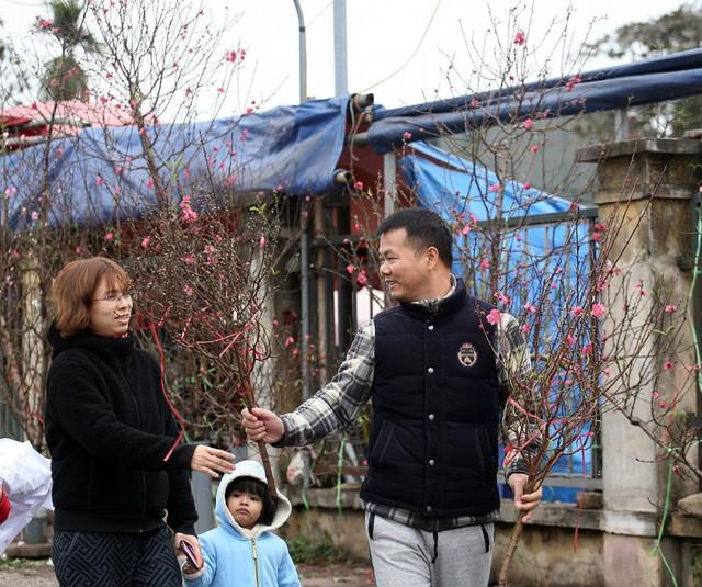 Tranh thủ tiết trời Hà Nội hửng nắng, rất nhiều gia đình đã có mặt tại chợ hoa Quảng An (Tây Hồ - Hà Nội) để lựa cho mình những cành đào Nhật Tân nở sớm.