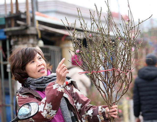 Đào không cần quá nhiều hoa nhưng cần phải có đủ cả lộc lẫn nụ, người phụ nữ nói.