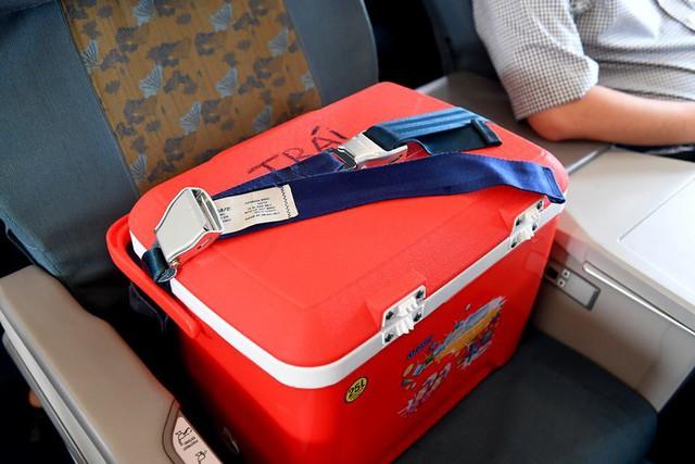 Vietnam Airlines thậm chí còn quyết định dành một ghế miễn phí cho thùng đựng tạng