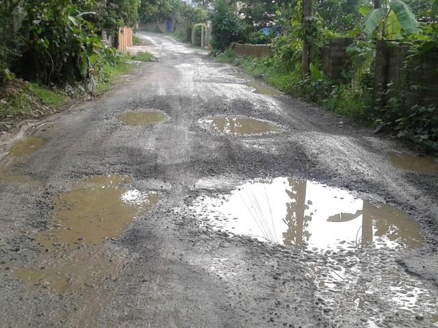 Tuyến đường dân sinh ngày càng bị xuống cấp trầm trọng.