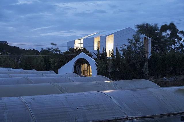 Quanh nhà là khu canh tác rau xen kẽ