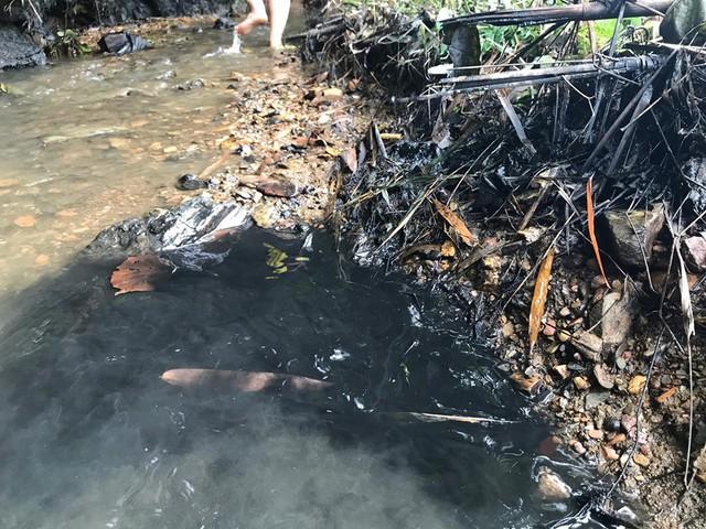 Phát hiện xe tải 2,5 tấn đổ trộm dầu thải ở khu vực đầu nguồn nước sông Đà - Ảnh 3.