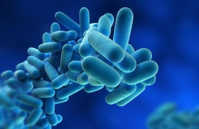 11 căn bệnh do nguồn nước ô nhiễm gây ra - Ảnh 4.