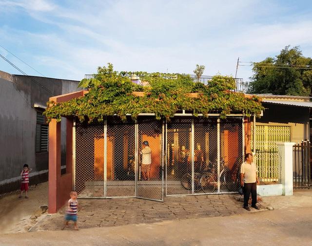 7 bậc thang trồng rau trên mái nhà Quảng Ngãi  - Ảnh 1.
