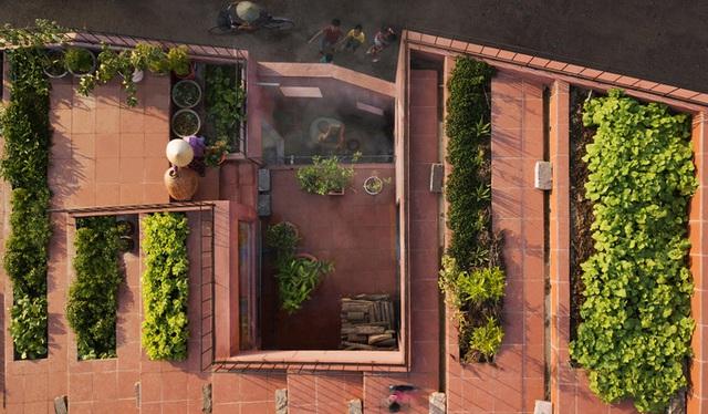 7 bậc thang trồng rau trên mái nhà Quảng Ngãi  - Ảnh 4.