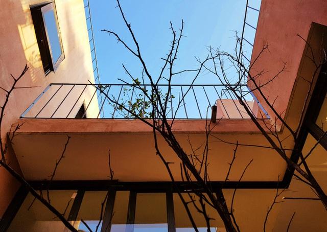 7 bậc thang trồng rau trên mái nhà Quảng Ngãi  - Ảnh 8.