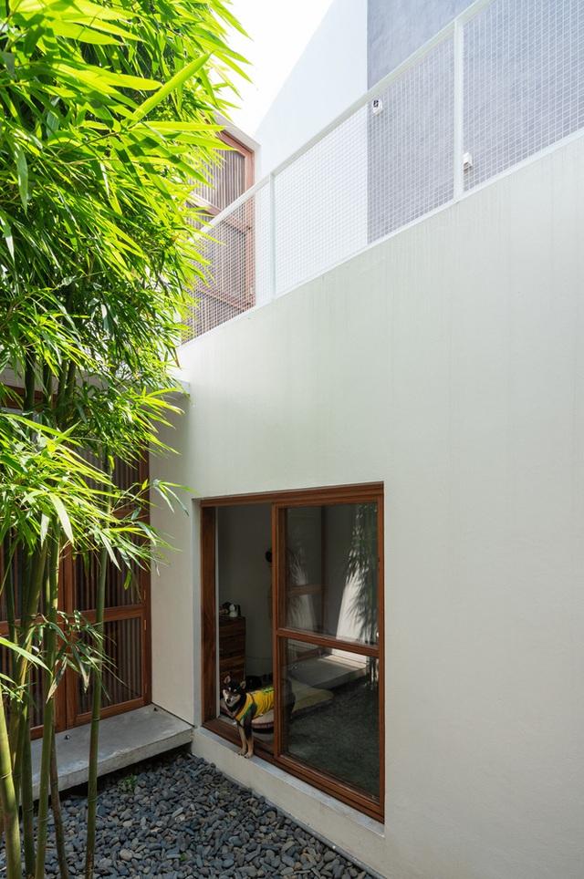 Nhà ngập nắng gió sau tường bao cao 9 mét  - Ảnh 11.