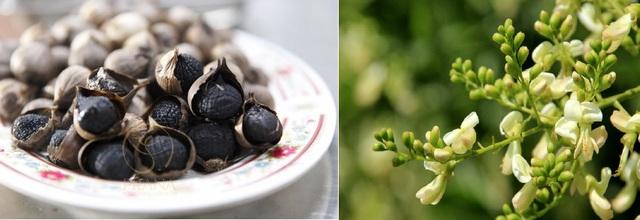 Cứu trái tim phải dùng tỏi đen, hoa hòe theo đúng cách sau - Ảnh 1.
