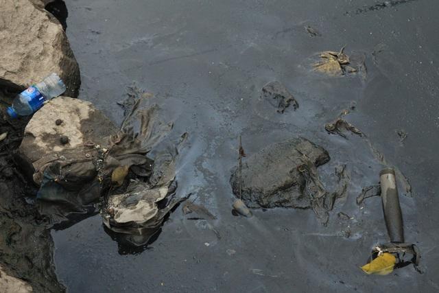 Tổ chức Nhật Bản sẵn sàng đầu tư chi phí xử lý sông ô nhiễm Tô Lịch, Hồ Tây - Ảnh 3.