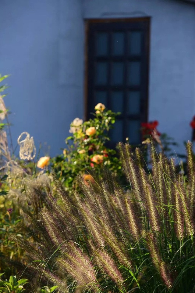 Cặp vợ chồng trẻ dành 5 năm để biến khu đất hoang rộng 6000m² thành khu vườn thiên đường của cỏ cây, hoa lá - Ảnh 15.