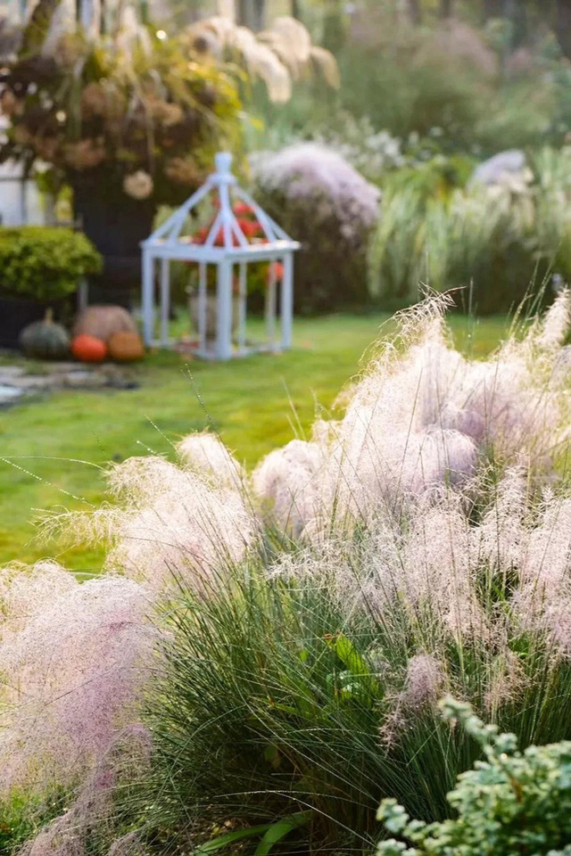 Cặp vợ chồng trẻ dành 5 năm để biến khu đất hoang rộng 6000m² thành khu vườn thiên đường của cỏ cây, hoa lá - Ảnh 18.