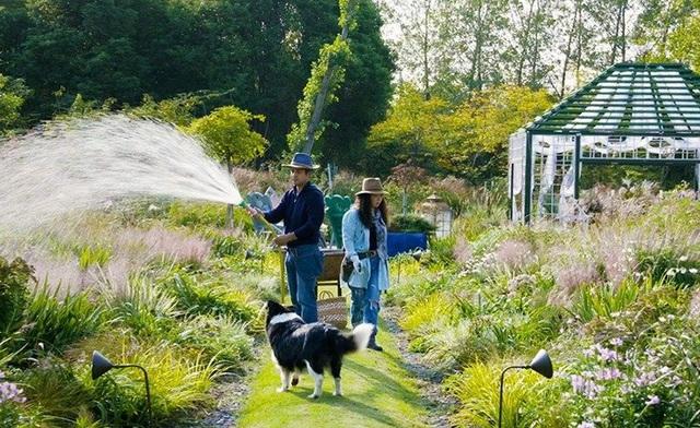 Cặp vợ chồng trẻ dành 5 năm để biến khu đất hoang rộng 6000m² thành khu vườn thiên đường của cỏ cây, hoa lá - Ảnh 31.