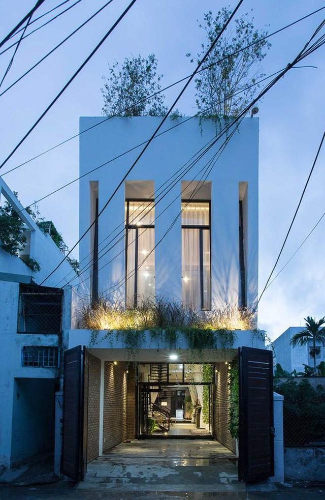 Không gian được thiết kế hiện đại, ấn tượng với những bức tường xanh.
