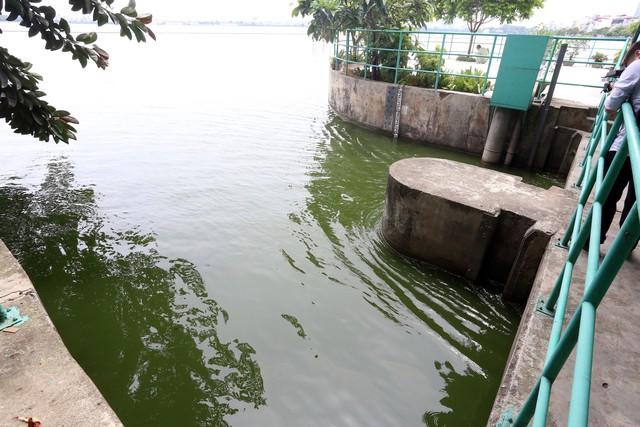 Trước đó, Công ty TNHH MTV thoát nước Hà Nội đã mở cửa xả từ Hồ Tây vào sông Tô Lịch (vị trí trên phố Trích Sài) để hạ mực nước mưa, chống ngập và tạo dòng chảy cho sông Tô Lịch. Ảnh: Bảo Loan