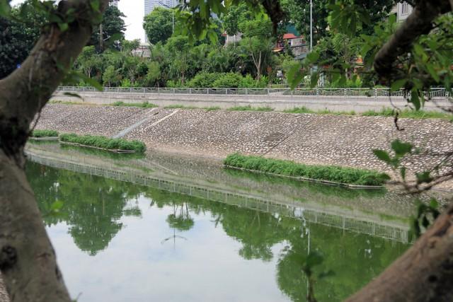 Sau đó, nguồn nước hồ Tây sẽ được điều tiết bằng cửa xả trên phố Trích Sài và đường Lạc Long Quân vào sông Tô Lịch để giúp làm sạch nước sông này. Ảnh: Bảo Loan