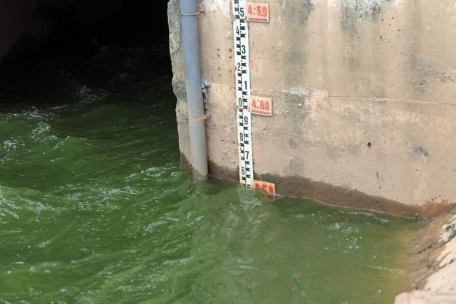 Đây một trong những nội dung nằm trong dự án Đầu tư xây dựng trạm bơm bổ cập nước Hồ Tây và cải thiện chất lượng nước sông Tô Lịch của Công ty TNHH MTV Thoát nước Hà Nội và đang được đơn vị này trình UBND TP Hà Nội. Ảnh: Bảo Loan